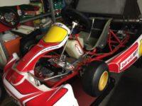 Vendo Easykart 60cc Birel revisionato completamente …